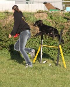 Vorsicht fliegender Hund!